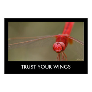 Trust Your Wings Red Dragonfly 48x32 Motivational Poster