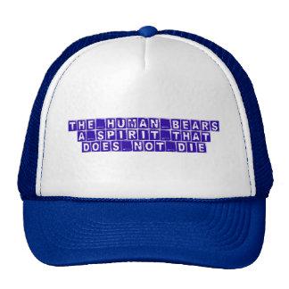 truth, knowledge, wisdom mesh hats