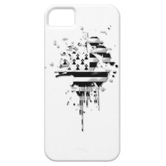 Try Brittany Breizh iPhone 5 Case