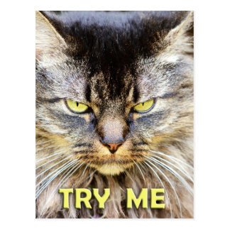 Try Me! Post Cards