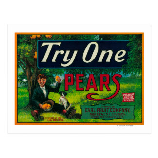 Try One Pear Crate Label Postcard