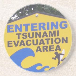 Tsunami Coaster