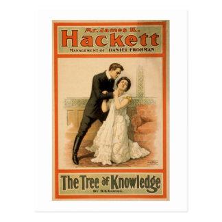 TTree del conocimiento 1898 Postal