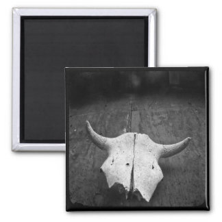 TTV Photo Skull magnet