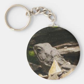 Tuatara - A Living Fossil Keychain