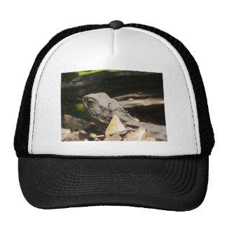 Tuatara - A Living Fossil Trucker Hat