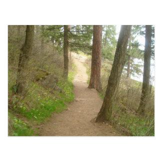 Tubbs Hill walking path Postcard