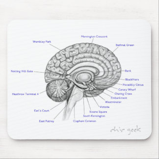Tube Brain Mouse Pad