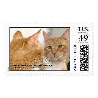 Tubo - dognkittycity.org Stamp