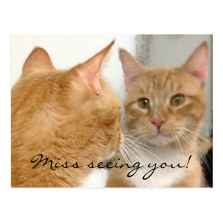 Tubo - Miss seeing you! Postcard