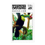 tucano postage stamps