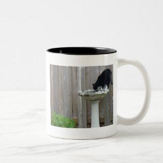 Tucker and the birdbath mug