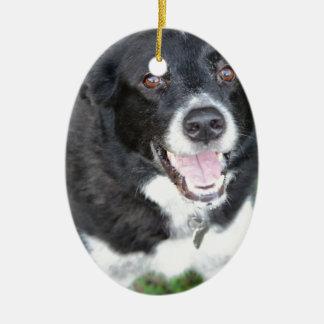 Tucker Ornaments Para Arbol De Navidad