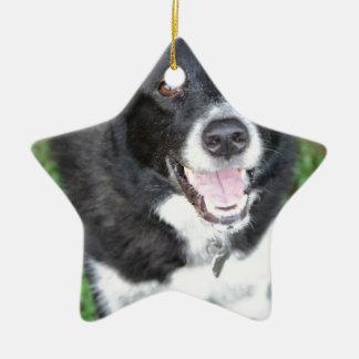 Tucker Adornos De Navidad