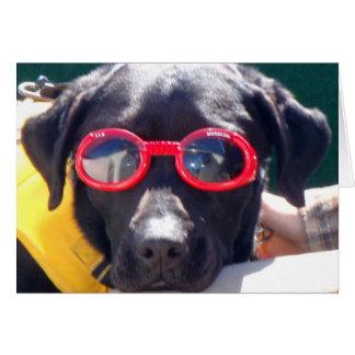 Tucker en los colmillos Labrador de la protección Tarjeta De Felicitación