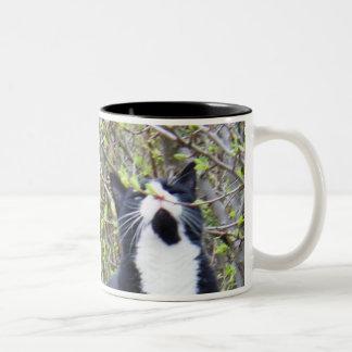 Tucker loves to smell spring mug