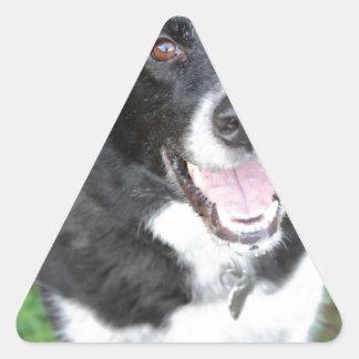 Tucker Pegatina Triangular