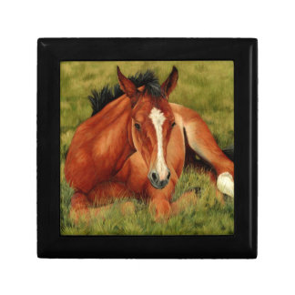 Tuckered Out - Resting Foal Keepsake Box