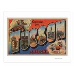 Tucson, Arizona - Large Letter Scenes Post Card