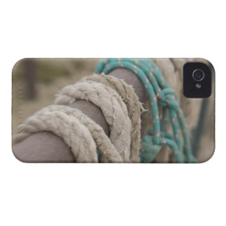 Tucson, Arizona: Ropes and hanrnesses used  on Blackberry Bold Cover