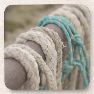 Tucson, Arizona: Ropes and hanrnesses used  on Coaster
