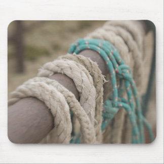 Tucson, Arizona: Ropes and hanrnesses used  on Mouse Pad