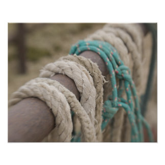 Tucson, Arizona: Ropes and hanrnesses used  on Poster