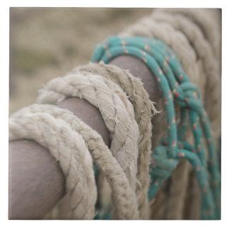 Tucson, Arizona: Ropes and hanrnesses used  on Ceramic Tile