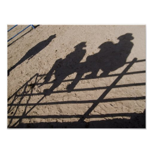 Tucson, Arizona: Shadows of Rodeo competitors Poster