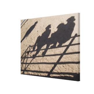 Tucson, Arizona: Sombras de los competidores del r Impresiones En Lienzo Estiradas