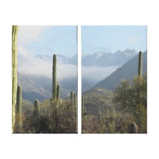Tucson Desert Canvas Print