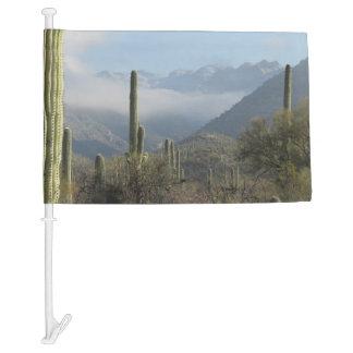 Tucson Desert Car Flag