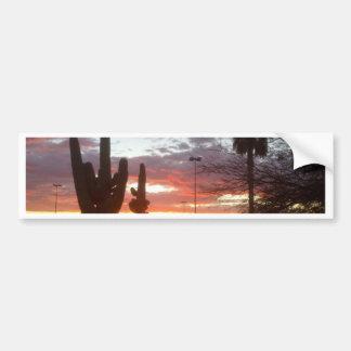 Tucson sunset with desert landscape. bumper sticker