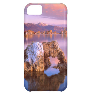 Tufa arch at Mono Lake iPhone 5C Cases