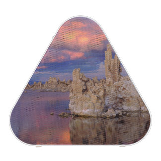 Tufa Formations on Mono Lake Bluetooth Speaker