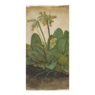 Tuft of Cowslips by Albrecht Durer Personalized Photo Card