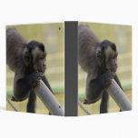 Tufted Capuchin Monkey Binder