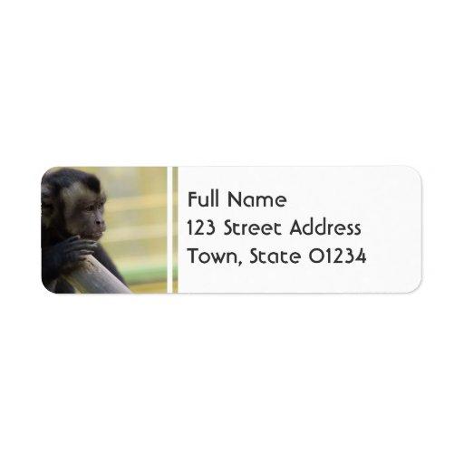 Tufted Capuchin Monkey Mailing Label