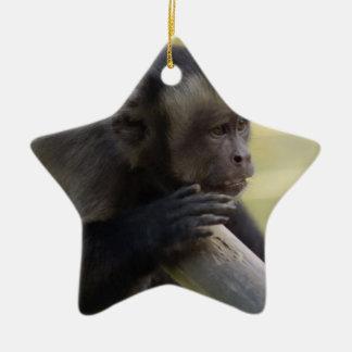 Tufted Capuchin Monkey Ornament
