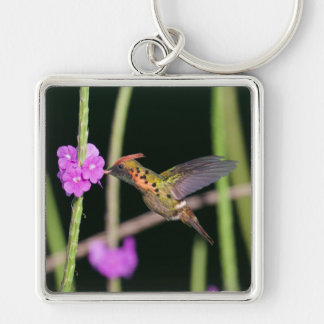 Tufted Coquette 4 Keychain