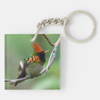 Tufted Coquette 6 Keychain