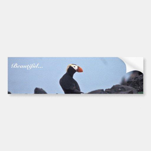 Tufted Puffin Bogoslof Island Bumper Stickers