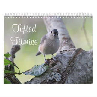 Tufted titmice calendar