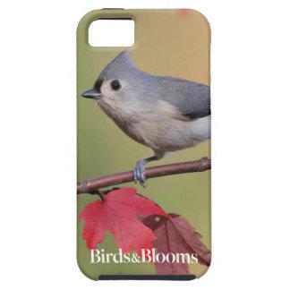 Tufted Titmice iPhone SE/5/5s Case