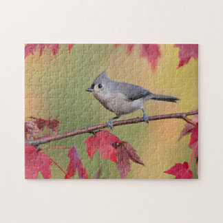 Tufted Titmice Jigsaw Puzzle