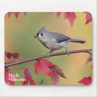 Tufted Titmice Mouse Pad