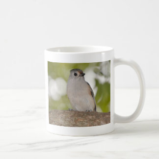 TUFTED TITMOUSE 1.jpg Coffee Mug