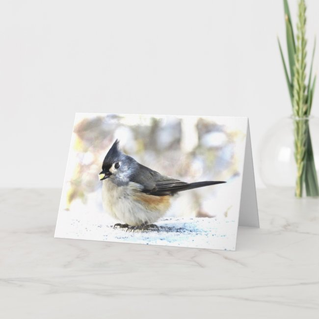 Tufted Titmouse Bird Nature Blank Card