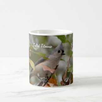 Tufted Titmouse Bird photo Coffee Mug