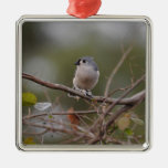 Tufted Titmouse Christmas Ornaments